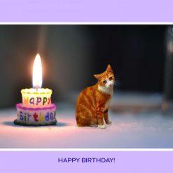 George's Birthday Card - blue background - A5 card