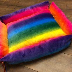 Rainbow Collar and Lead Set