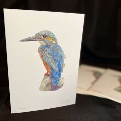 Kingfisher Handmade Greetings Card Fine Art, Hand Signed by the Artist