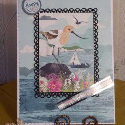 Framed Sea Bird Scene Any Occasion Card