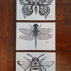 Its a Bugs Life postcards,prints from ink drawings ,bee, dragonfly,butterfly,black and white postcard, bee wall art, butterfly,Wall art