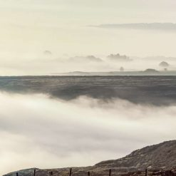 Panorama - Early Morning Mist