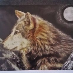 """Wolf In The Mountains - Blank Greetings Card 7""""x 4½"""""""