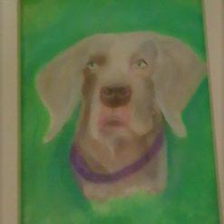 Weimaraner Art, Paint Pastels, Weimaraner Wall hanging Framed, Weimaraner Painting, Dog art