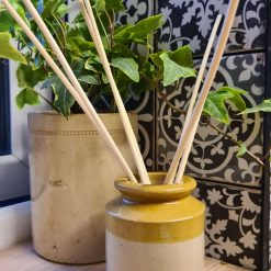 Extremely Rare Antique Cream Jar Reed Diffuser (Free Shipping)