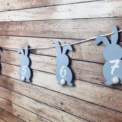 First Birthday Monthly Photo Milestone Banner | 12 Months | Some Bunny is One | Bunny Bunting | First Birthday