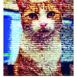 George the Station Cat 2022 A4 Calendar by Stumpy Cat