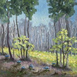 Landscape woodland oil painting.10'' x 12''