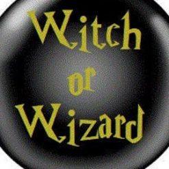 Gender Reveal Balloon Sticker Witch or Wizard