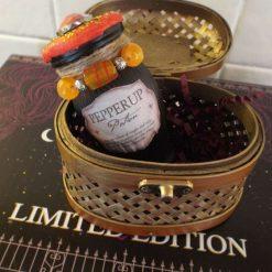 Harry Potter Inspired Potion Bottle Pepperup Potion & Casket