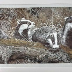 Badgers kiln fired piece for stained glass 19 cm x 10 cm approx