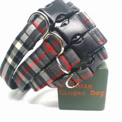 Surrey Dog Collar