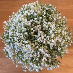 Gypsophila Bride bouquet, Rustic, White bride bouquet