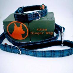 Bedfordshire Blue Dog Collar