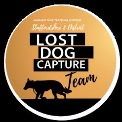 Lost Dog Capture 2022 A4 calendar
