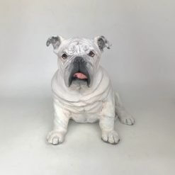 English Bulldog Sculpture/ Urn- Hand Sculpted from your Photos (Copy)