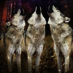 Wolf Art Print, Wolf painting, canine art, wolf lover, wolfpack, wild dogs art, wall décor, Xmas gift. From £30 with free shipping.
