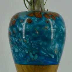 Wood and Resin vase with Air plant