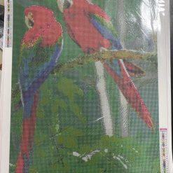 50 x 70 cm diamond.art kit (parrots)