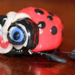 Priscilla the Ladybird