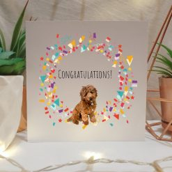 Tabby Cat Congratulations Card   Illustrated Cards   Cat Themed Gift   Well Done Card