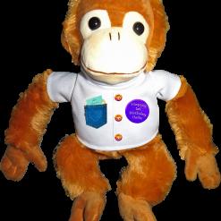 Personalised Birthday Monkey Teddy Keepsake