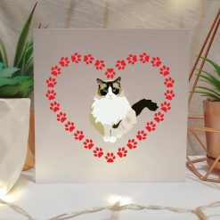 Tabby Cat Anniversary Card | Cat Themed Gift | Cute Cat Design | Illustrated Cards